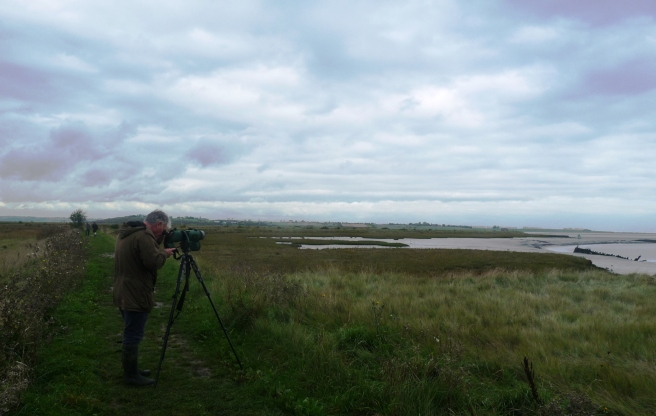 Kevin Duvall at Oare Marshes crop bright