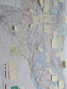 It was good to end the week on a positive note – this is just one of the maps that we covered at a Kent Nature Partnership meeting with notes of projects happening right now to restore and create new habitats for wildlife.