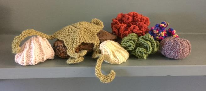 crochet coral reef beginnings