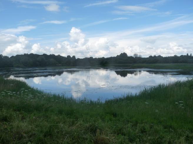 East Marsh Pool at Brandon Marsh Nature Reserve