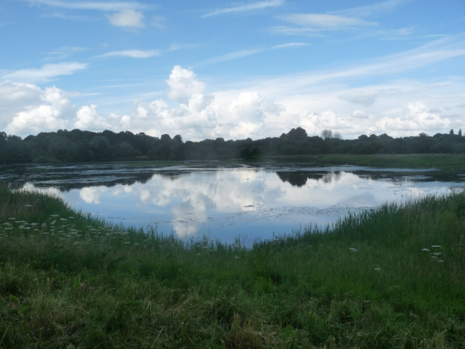 East Marsh Pool at Brandon Marsh Nature Reserve