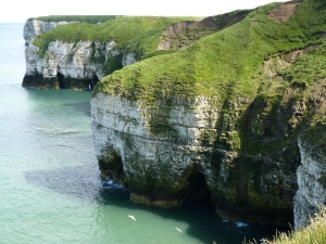 Flamborough Cliffs Nature Reserve, Yorkshire Wildlife Trust