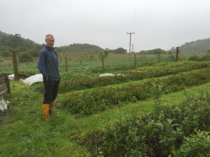 Nick Clooney at the Little Assynt Tree Nursery