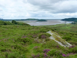 Heathland at the top of the site, overlooking the Dwyryd estuary